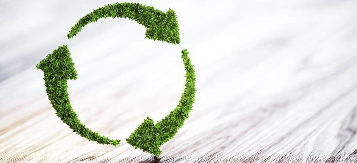 5 Ways You Can Achieve ROI With Green Buildings