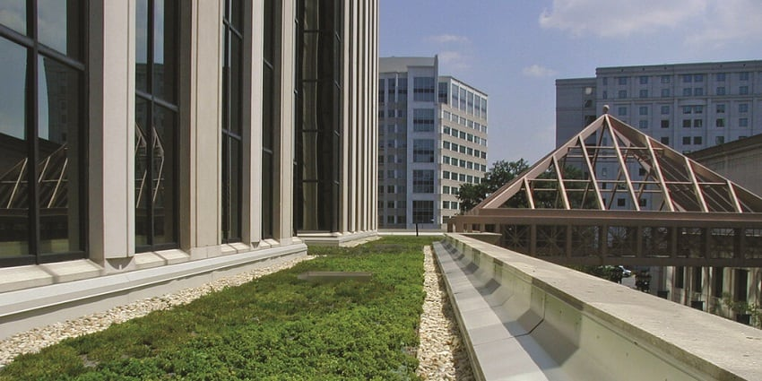 Facilities Management and Green Buildings: Maintaining a Healthy Green Roof